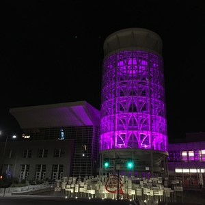 purple_salt_palace